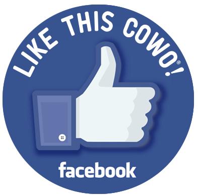 Coworking Mendrisio Stabio su Facebook